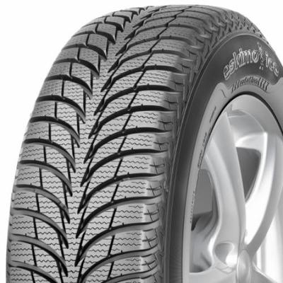 Sava Eskimo ICE (by Goodyear)